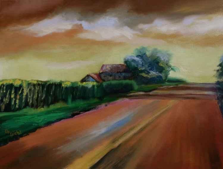 Cornfields -