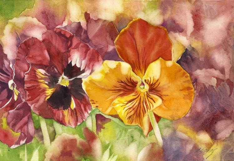 colorful pansies - Image 0
