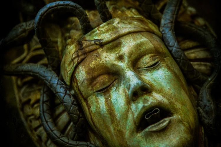 The Garden Medusa - Image 0