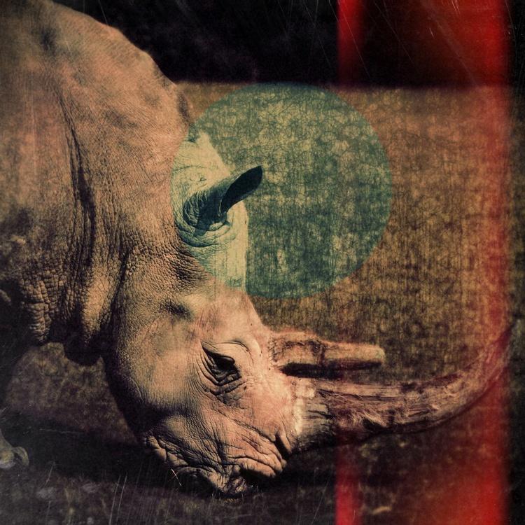 Rhinoceros Cinema - Image 0