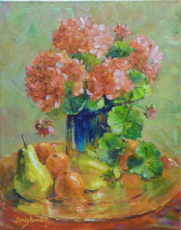Geraniums -