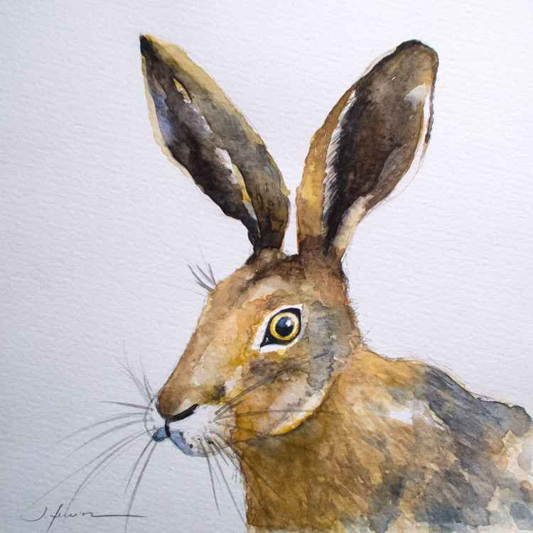 Hare II -