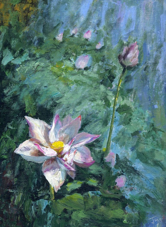 Lotus - Image 0