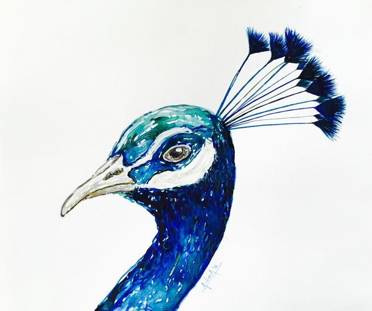 Blue attention seeker - Image 0