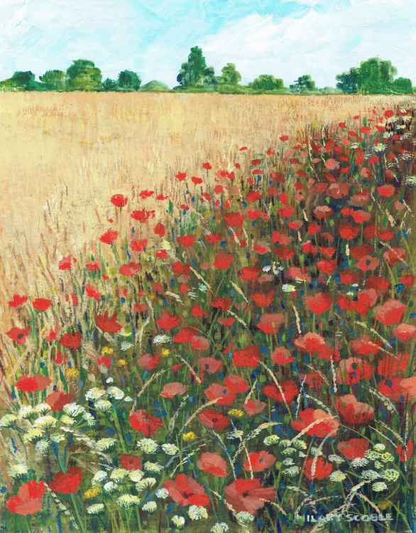 A Feast of Poppies -