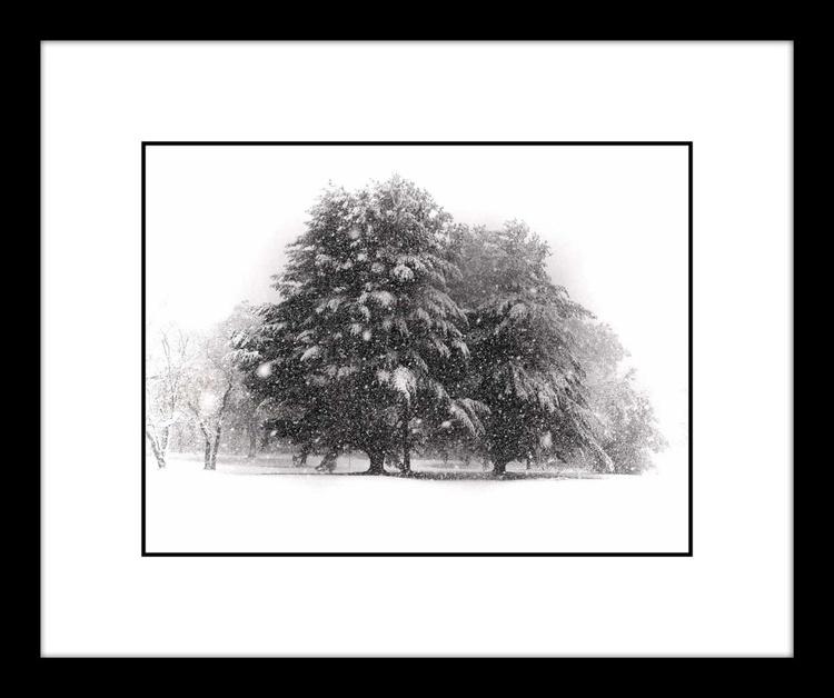 SNOW BLIZZARD - Image 0