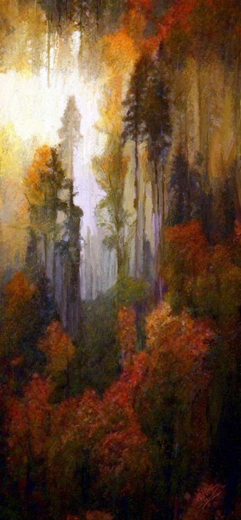 Tall Forest - Image 0