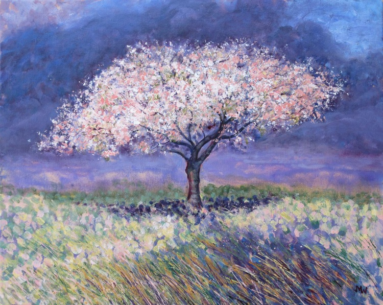 Cherry Tree in Spring - Image 0