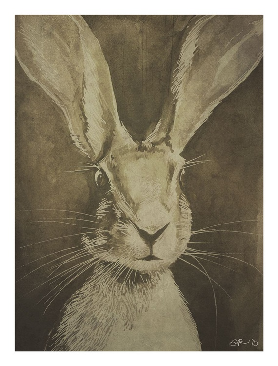 Hare - Image 0