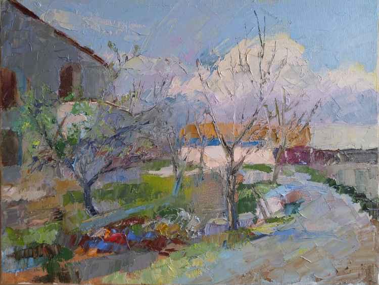 Spring in village