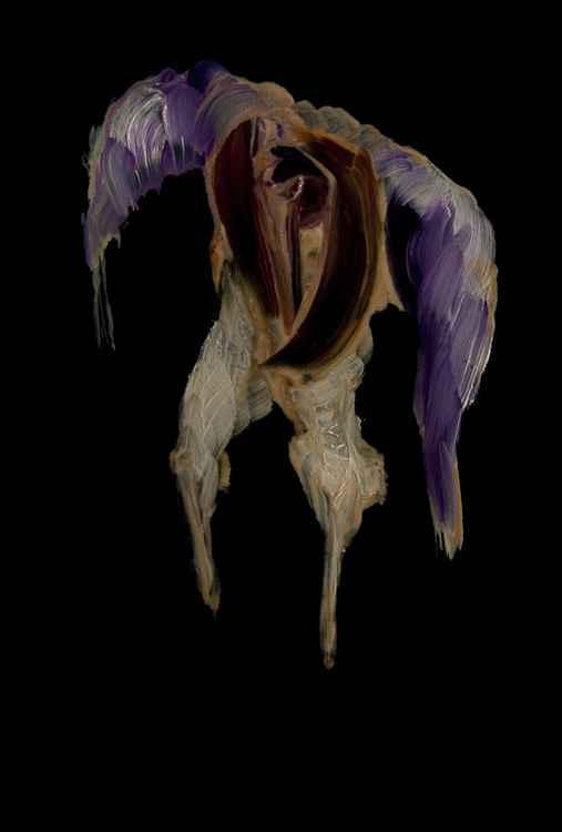 Underwater Bird -