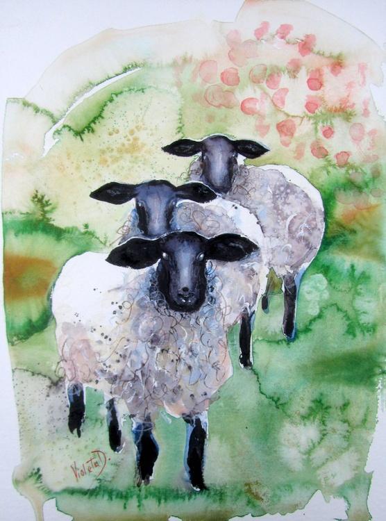 Sheep - Image 0