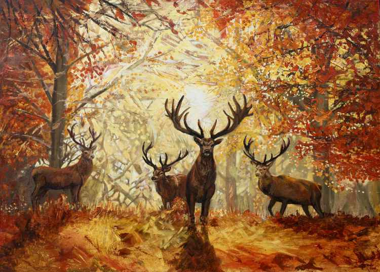 Stags in Autumn -