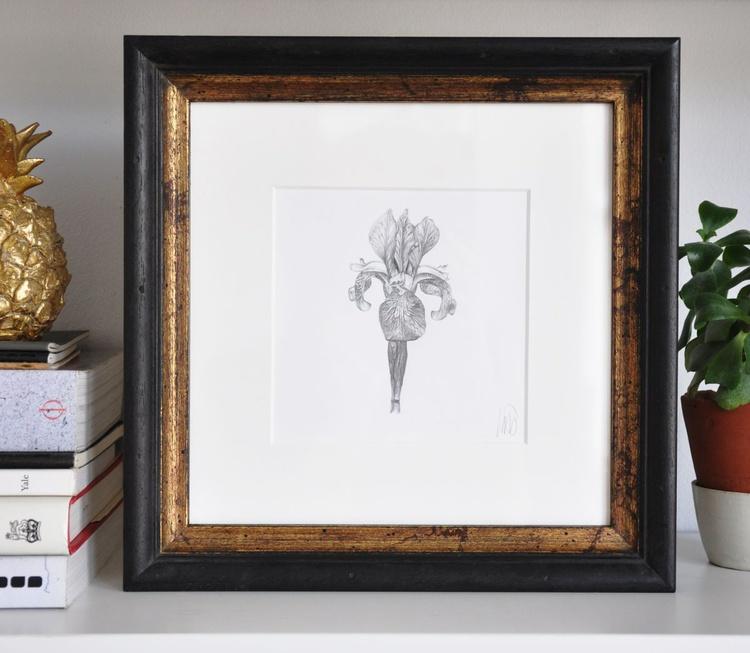 Original drawing of an iris flower - Image 0