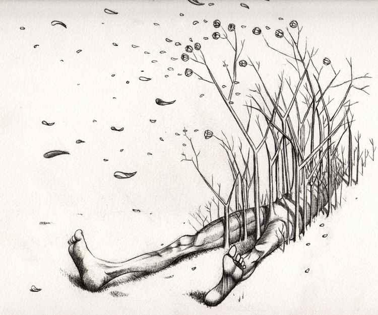deviens la forêt