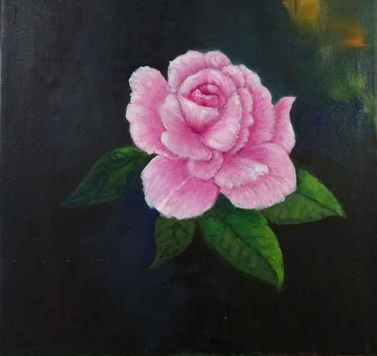 Una rosa -