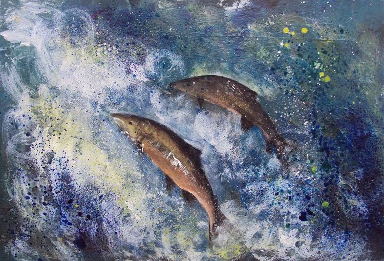 Salmon Fish Jumping Upstream - Image 0