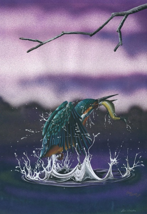 European Kingfisher - Image 0