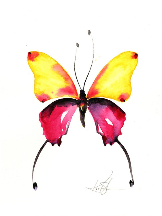 Watercolor Butterfly 9 - Abstract Butterfly Watercolor Painting - Image 0