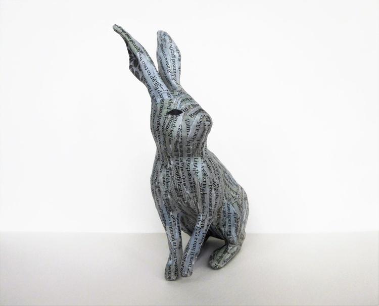 Rhoscolyn Hare - Image 0