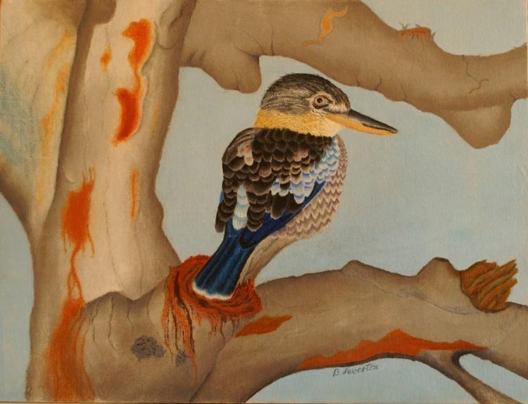 Beautiful blue-winged Kookaburra - Image 0