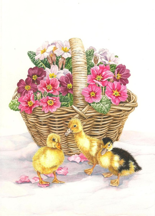 Ducklings and Primroses - Image 0