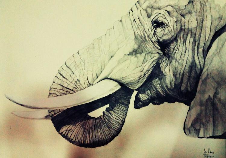 ELEPHANT 2 - Image 0