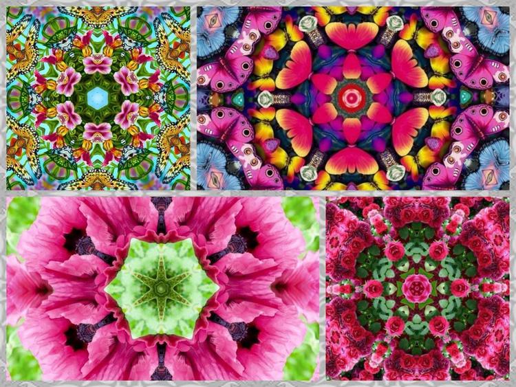 Mandala collage x4 1 - Image 0