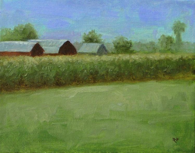 Maize Farm - Image 0