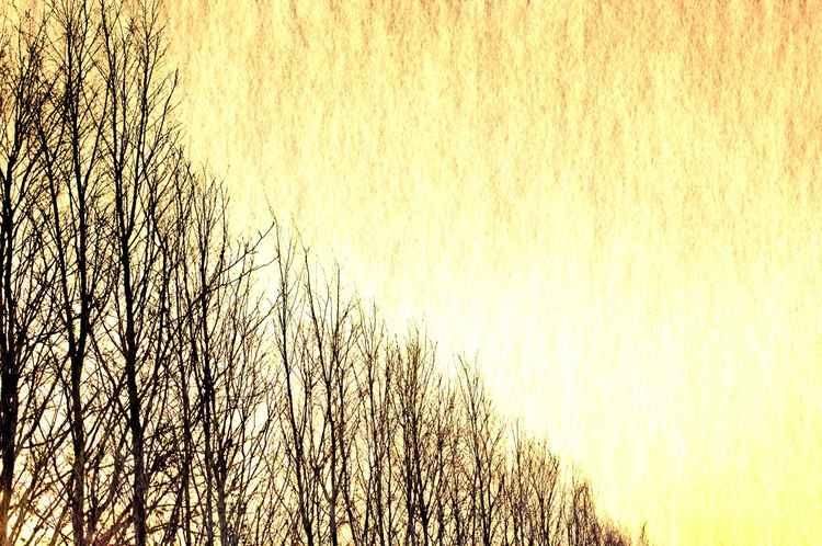Warm Horizon -