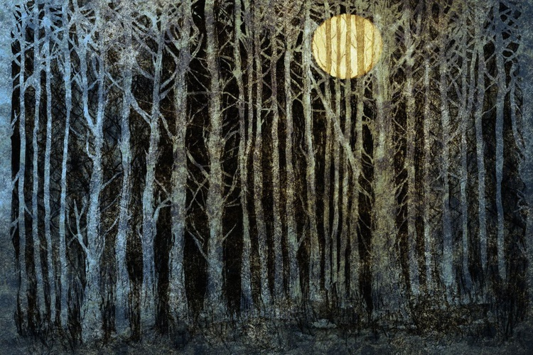 Caged Moon (Ltd Edition of only 20 Fine Art Giclee Prints from original artwork.) - Image 0