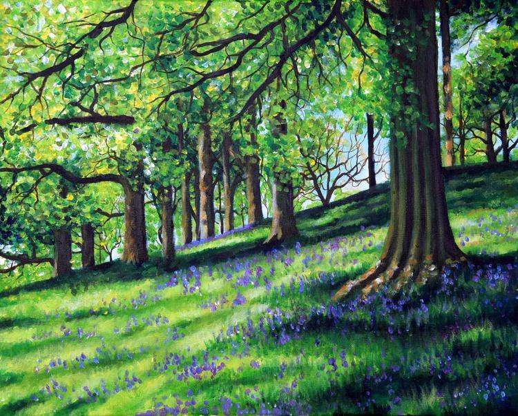 Forest Glade - Image 0
