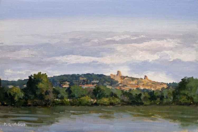 Le Rhône à Châteauneuf du Pape -