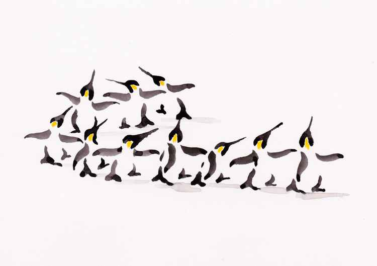 Ten penguins 2115A -