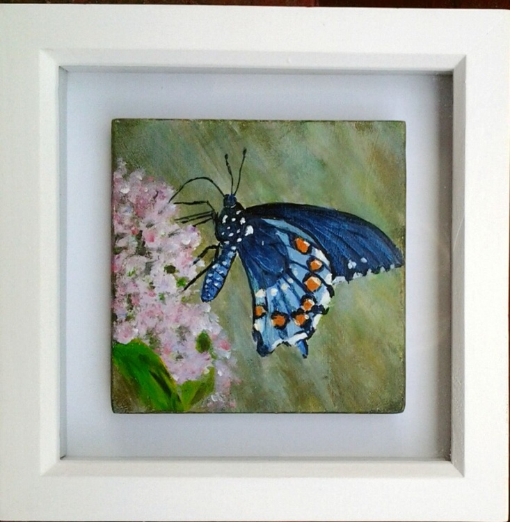 """""""BUTTERFLY in MINIATURE"""" - Image 0"""