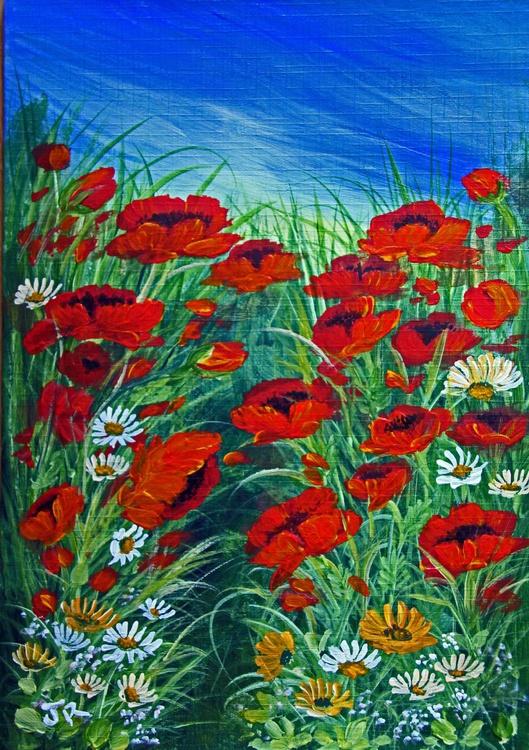 Wild Poppy Meadow - Image 0