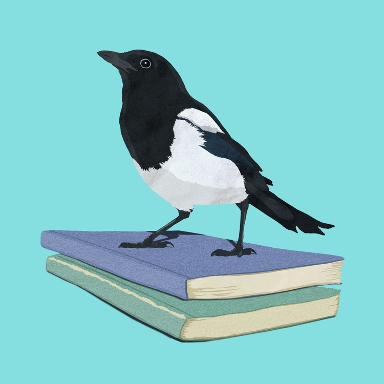 The Magpie Librarian - Image 0