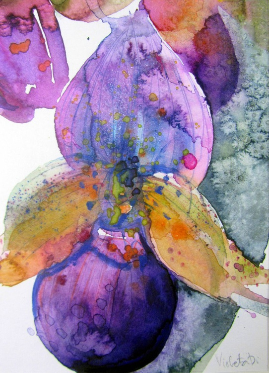 Orchid overdose - Image 0