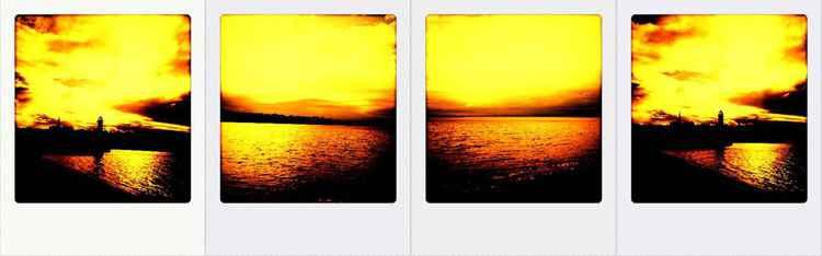 the gold sea