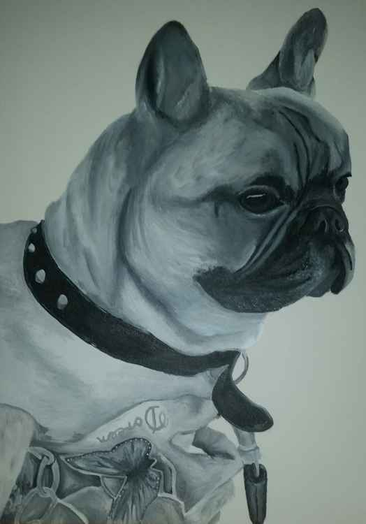 Ernest French Bull Dog -