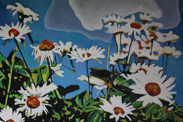 Oxeye Daisies - Image 0
