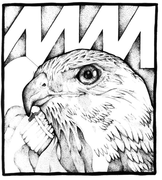 A Hawk Roosting - Image 0