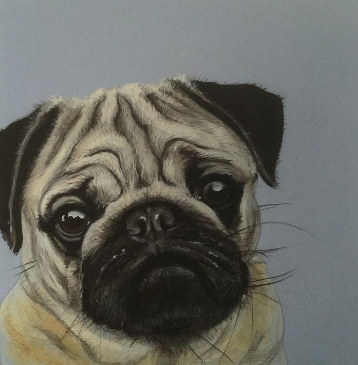 Pug - Image 0