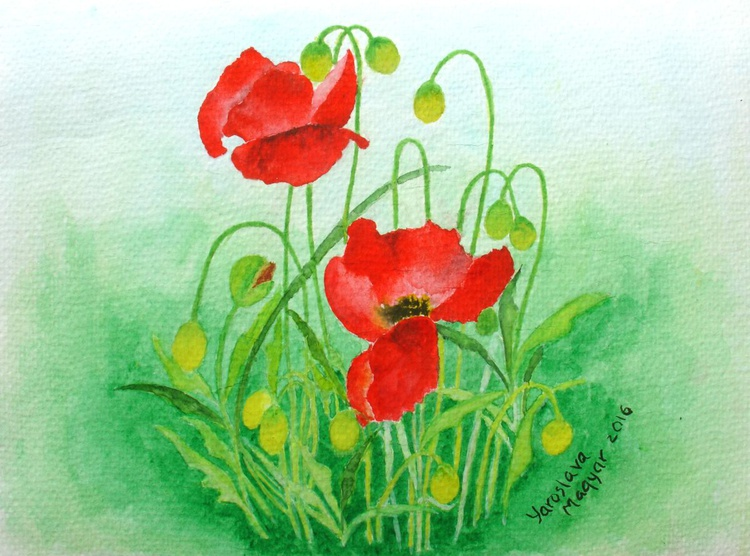 The Sunny Poppies - Image 0