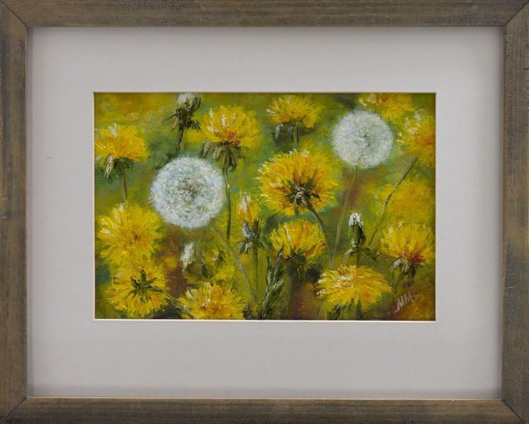 A field of Dandelions - Image 0