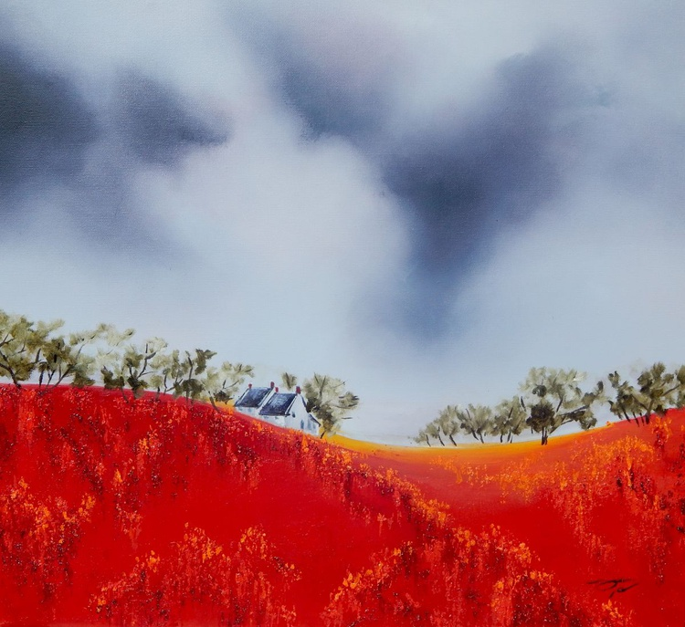 Bloomimg poppy field - Image 0