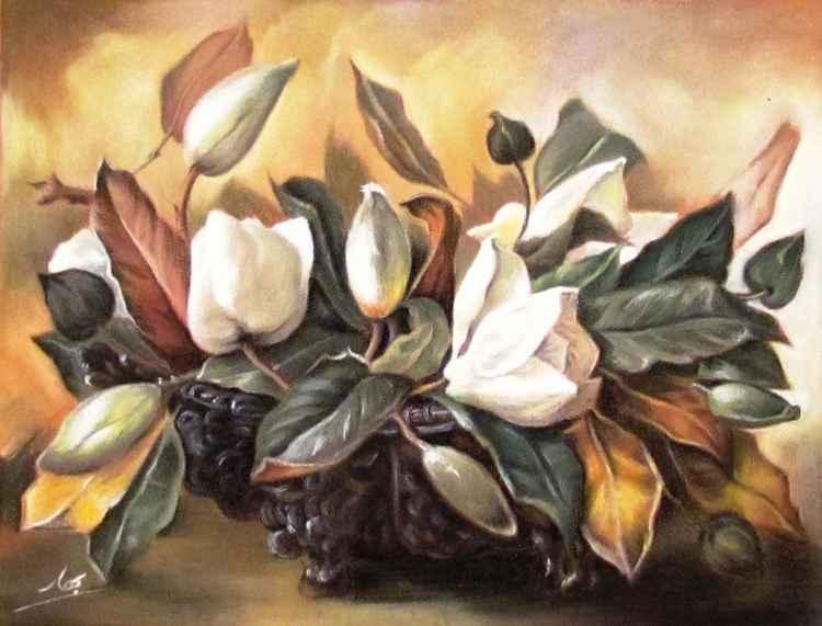 Magnolia Flowers -