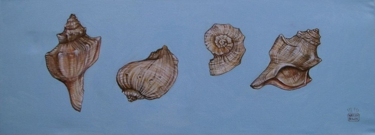 (Empty) Shells. - Image 0