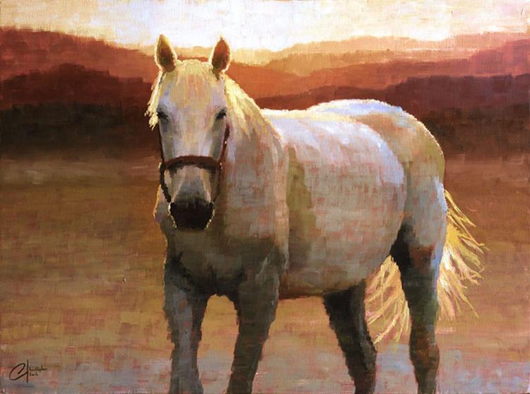 Grey Horse at Sunset - Image 0