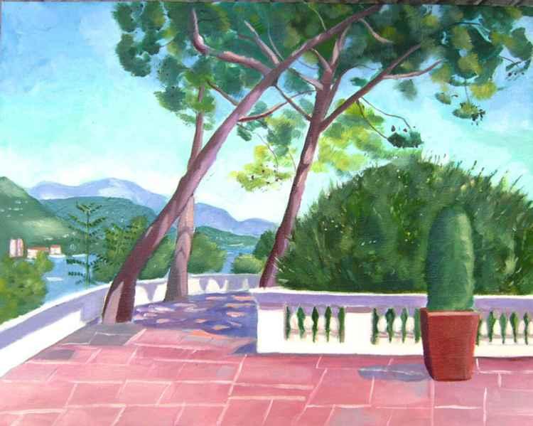 Trees in Monaco -